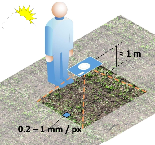 How to take a soil image.